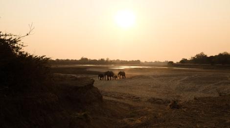 Zambia (453 of 540)